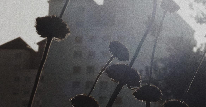 Photo d'Adélaïde Caumont